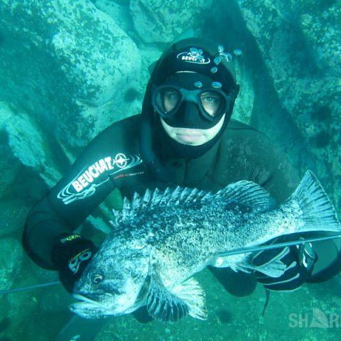 Подводная охота на темного окуня